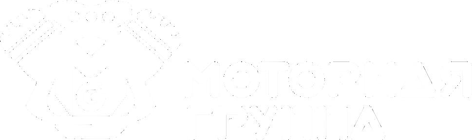 Motorgrup Моторная группа